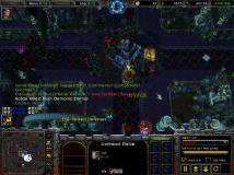 WC3ScrnShot_010816_224648_14.jpg